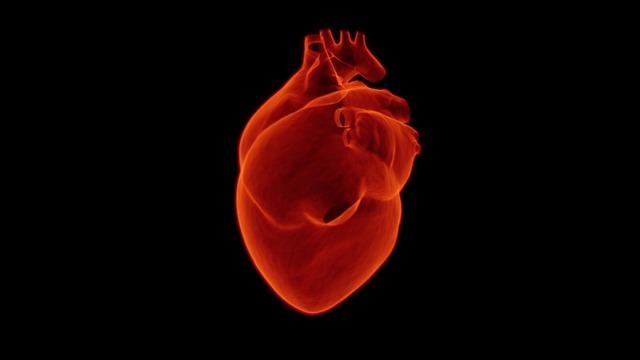 høyt blodtrykk nyresykdom